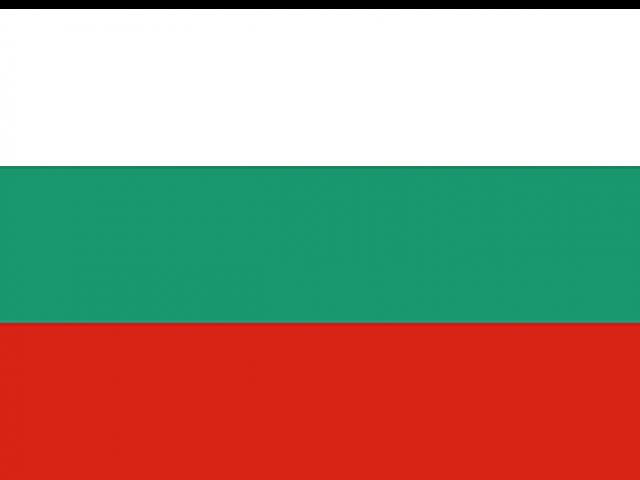 https://electrictelehandler.co.uk/wp-content/uploads/2021/05/Bulgaria-640x480.png