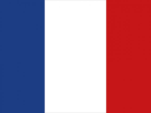 https://electrictelehandler.co.uk/wp-content/uploads/2021/05/France-640x480.png