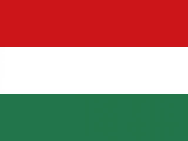 https://electrictelehandler.co.uk/wp-content/uploads/2021/05/Hungary-640x480.png