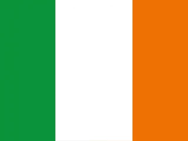 https://electrictelehandler.co.uk/wp-content/uploads/2021/05/Ireland-640x480.png