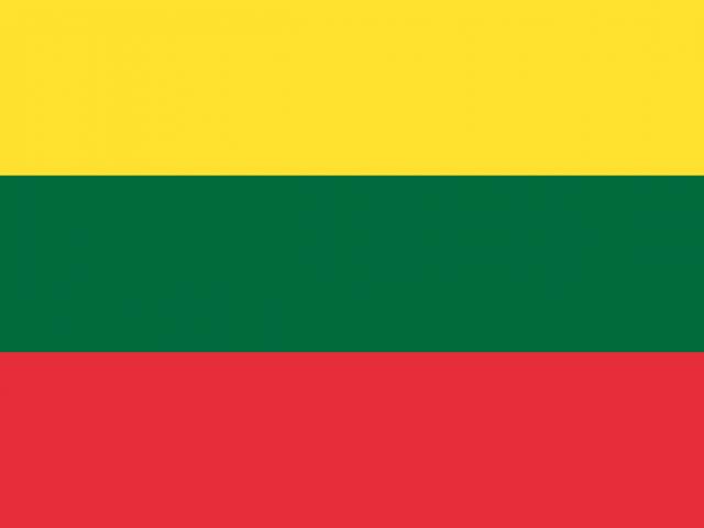 https://electrictelehandler.co.uk/wp-content/uploads/2021/05/Lithuania-640x480.png