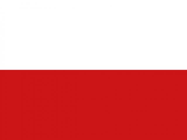 https://electrictelehandler.co.uk/wp-content/uploads/2021/05/Poland-640x480.png