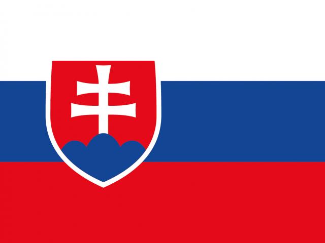 https://electrictelehandler.co.uk/wp-content/uploads/2021/05/Slovakia-640x480.png